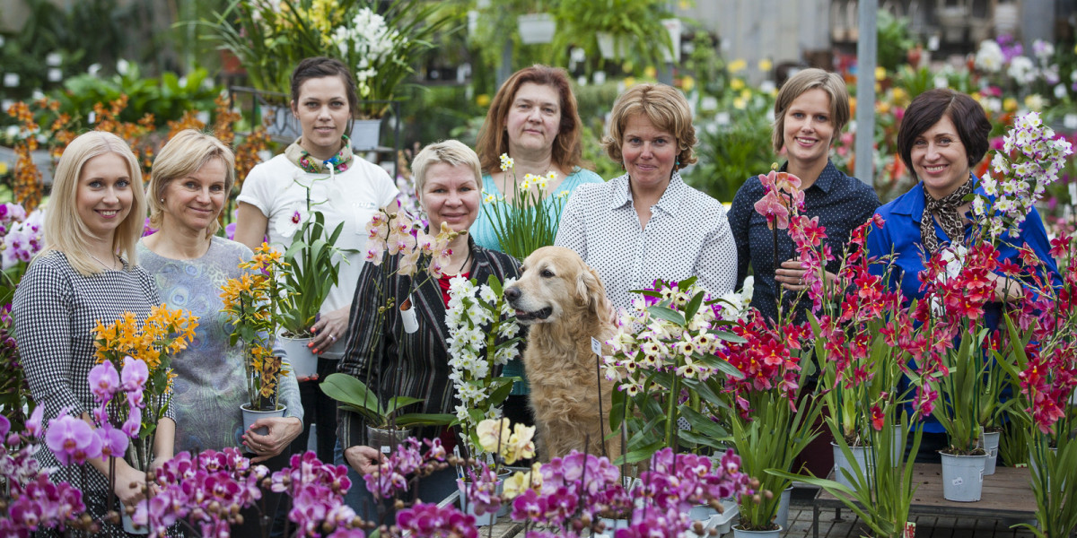 Kirjuta ja helista meile jardin lilled for Jardin lilled