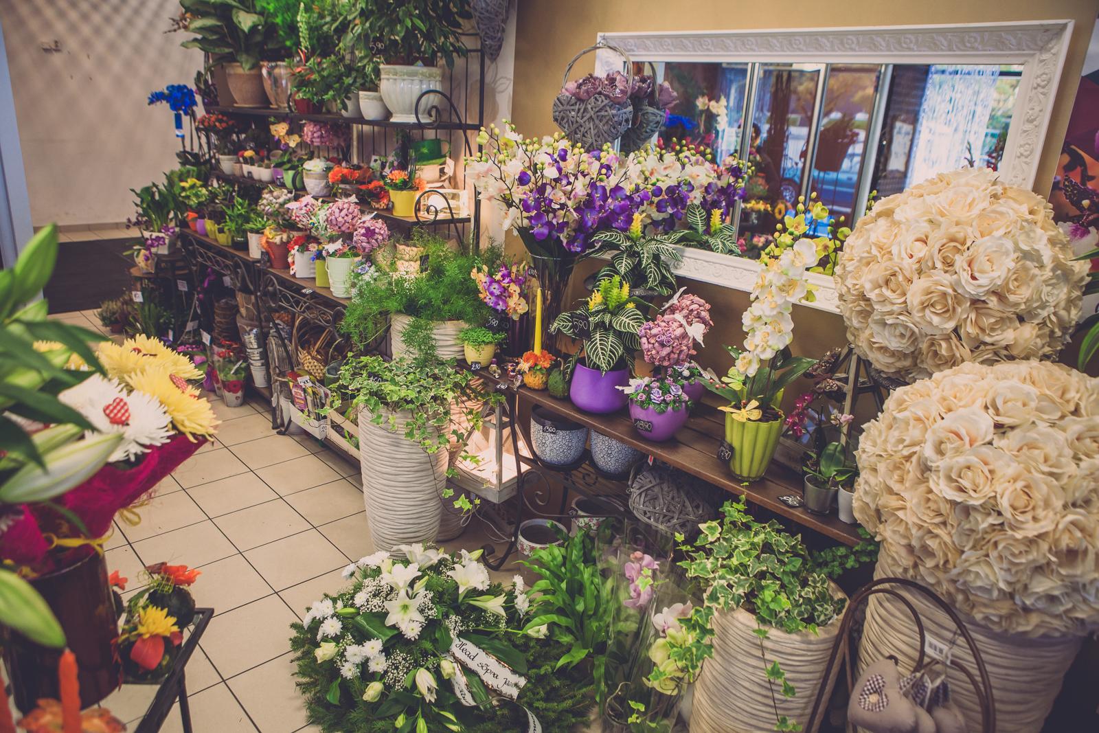 Paide jardin jardin lilled for Jardin lilled