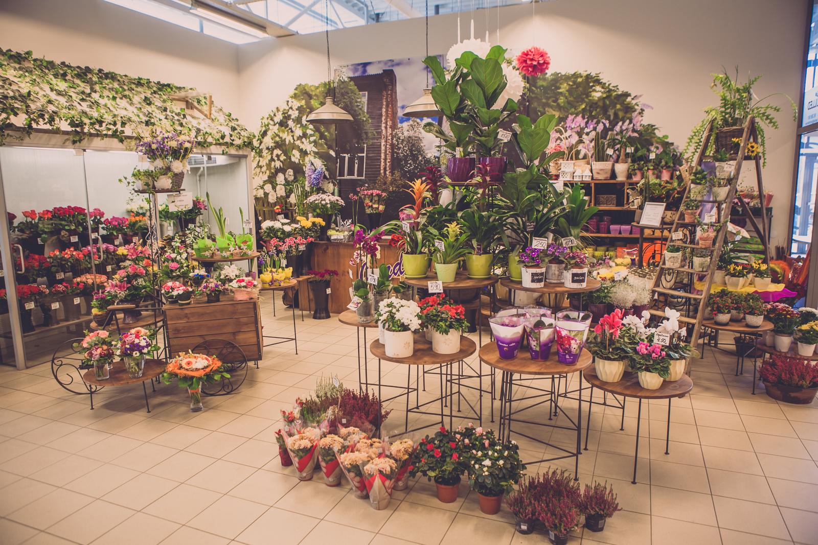 aardla jardin jardin lilled