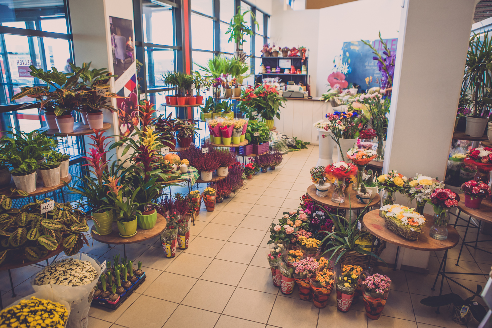 Tartu ringtee jardin jardin lilled for Jardin lilled
